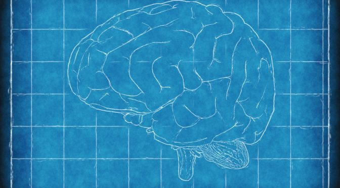The Perks of Resting Your White Matter