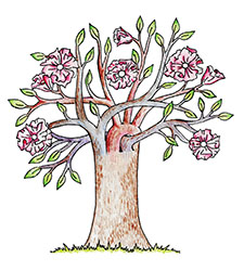 Lisa Kipersztok, '15, created this tree illustration to honor the donor for her anatomy class.