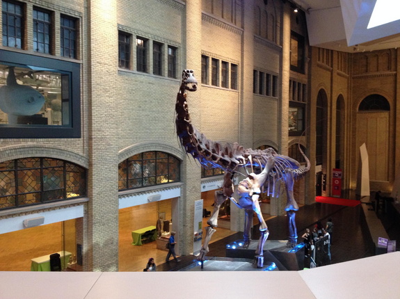Futalognkosaurus greets visitors as they enter the lobby.
