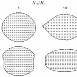 Examples of four achievable shapes for a droplet of nematic liquid crystal