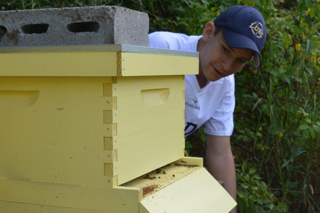 Lexington High School student Adam Winter measuring foraging effort of a hive.