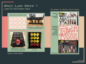 Bray Lab: Week 1