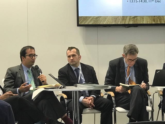 IERP Pre-doctoral Fellow Speaks on Panel at COP24