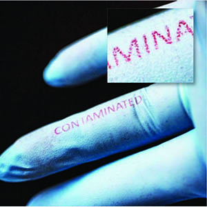 """The word """"contaminated"""" turned from blue to red in the presence of E. coli bacteria on a surgical glove."""