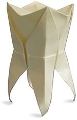 150W_Origami tooth
