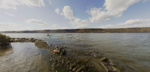 Seining Along the Hudson: The Wonders in Hidden Biodiversity