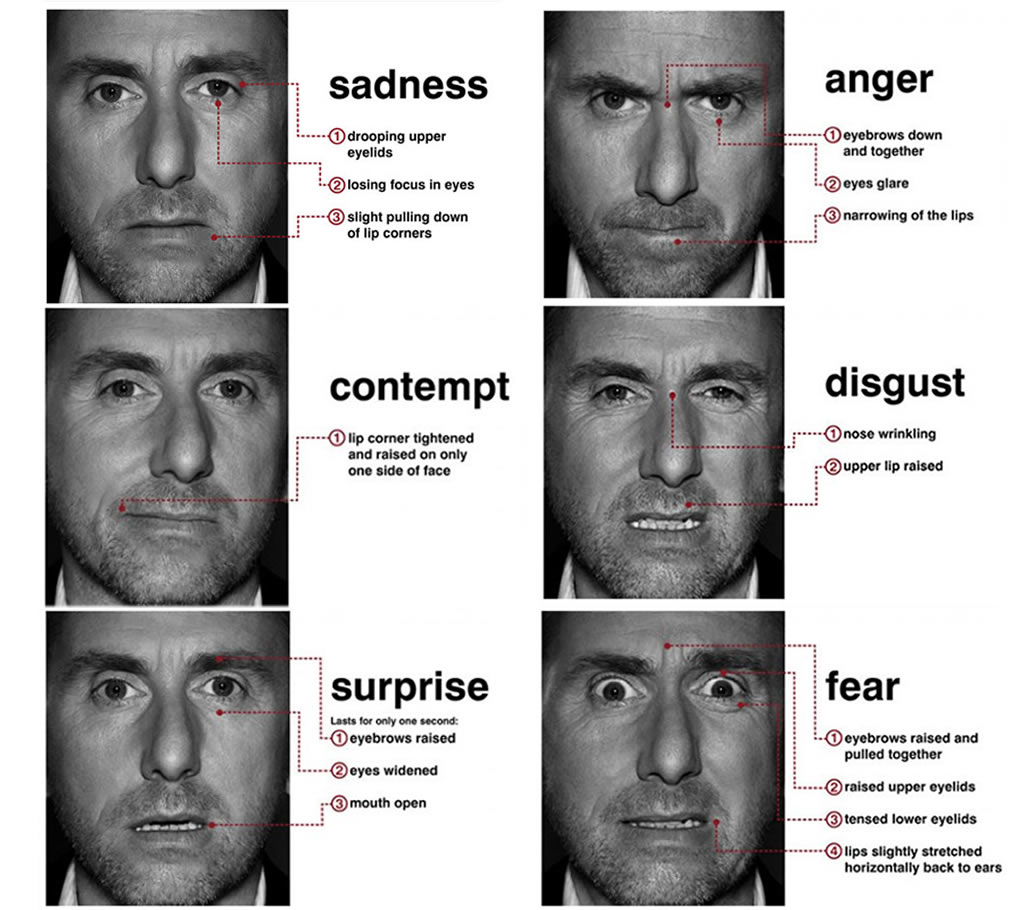 Hemifacial Asymmetry in Emotion Expressions