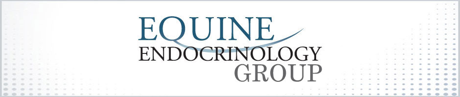 Equine Endocrinology Group