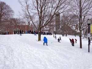 Photo Sledding by Tisch by Chrissy Hunt on Flickr.