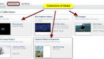 Media Gallery - Collections
