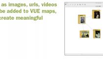 VUE maps
