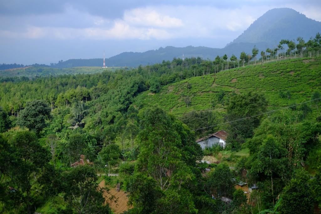 Indonesia hills