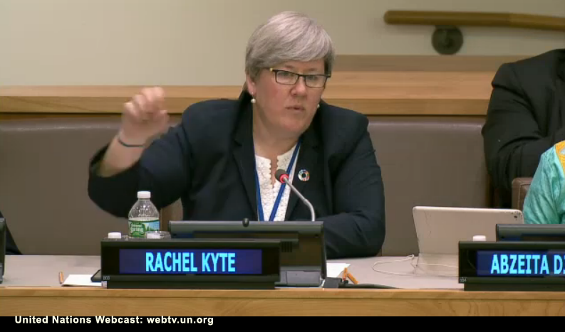 Professor Rachel Kyte, F02, speaking before a UN panel on climate change.