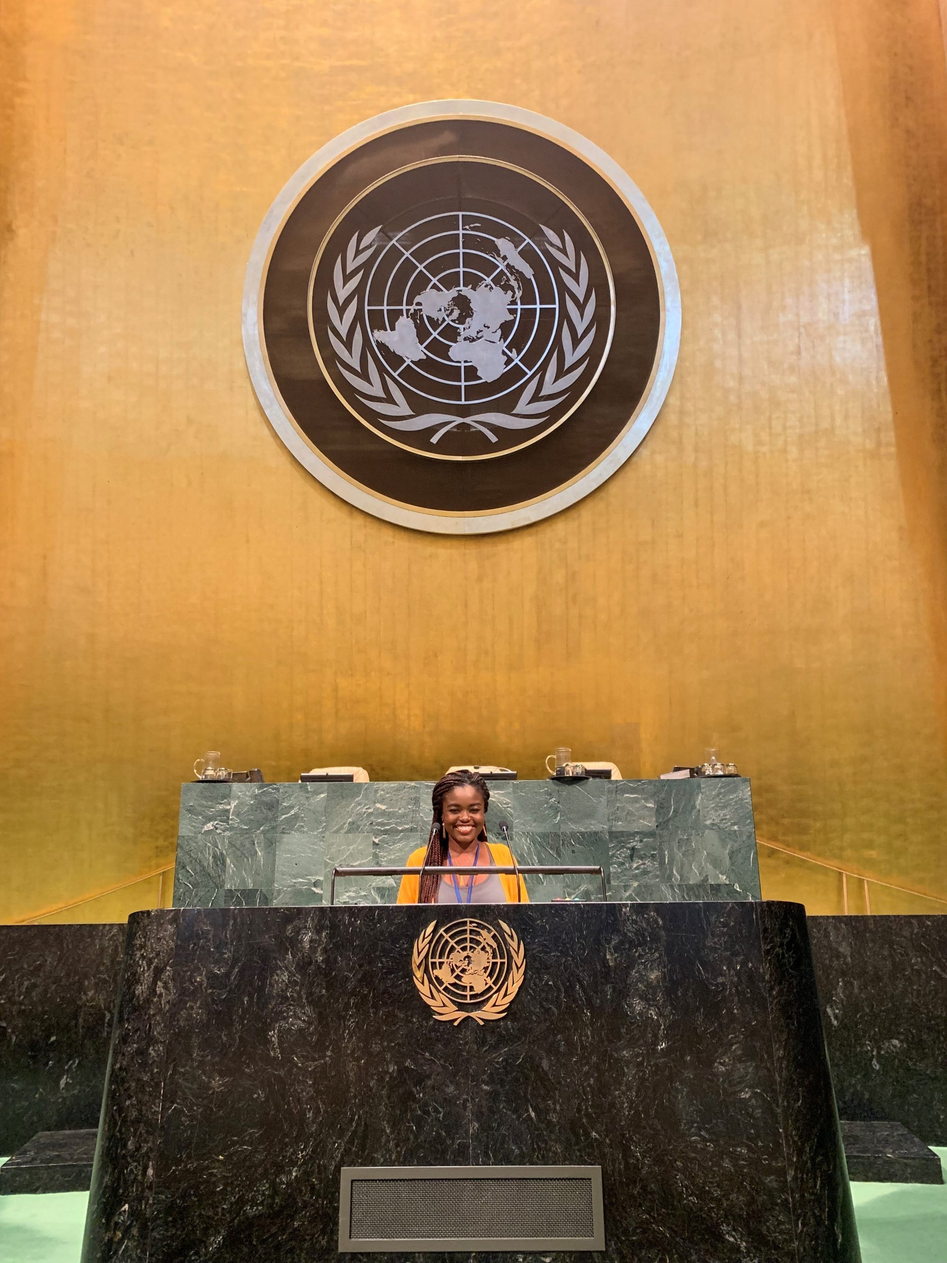 Princess at the UN