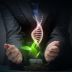 Illustration: Organic Science theme with DNA and young green sprout rising
