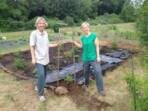 Cherie's garden at work