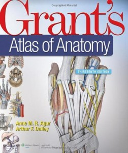 grants_atlas_of_anatomy