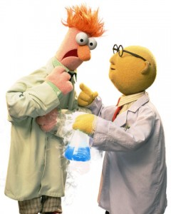 Image courtesy of http://muppet.wikia.com