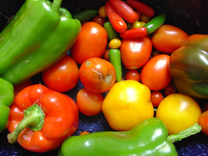 Colorful_Photo_of_Vegetables