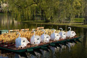 https://pixabay.com/en/swan-boats-pond-park-670898/