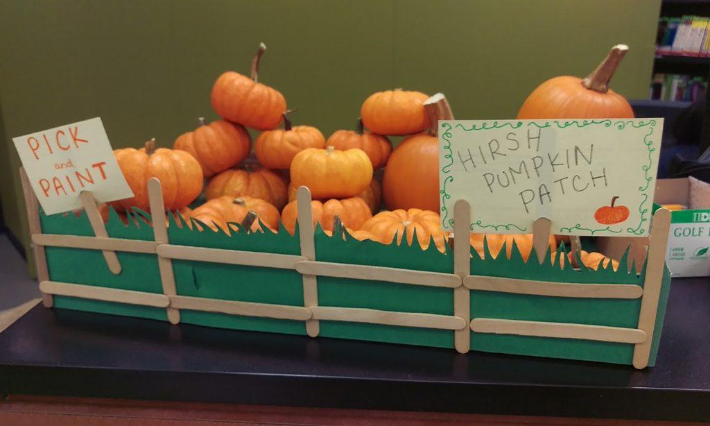 Mini pumpkins in box that looks like a pumpkin patch
