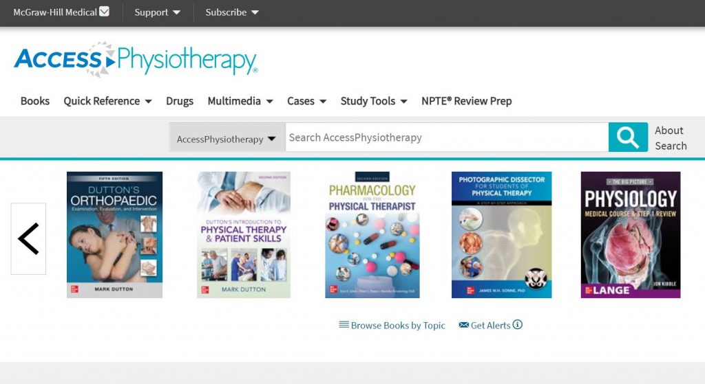 Screenshot of Access Physiotherapy website