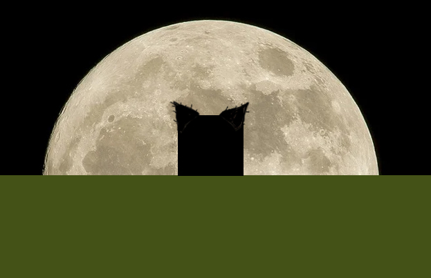 a black square in front of the moon with ears