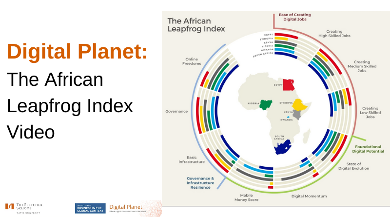 The African Leapfrog Index: Video Summary