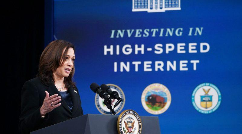 Political Bickering Prolongs the Digital Divide
