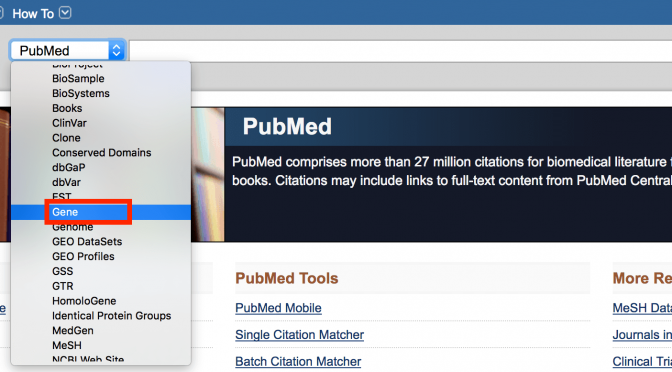 Notes from the Library…Finding Gene Information in PubMed