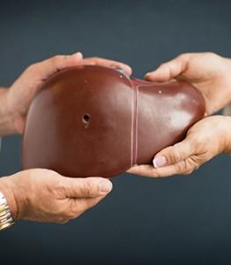 300W_hand liver
