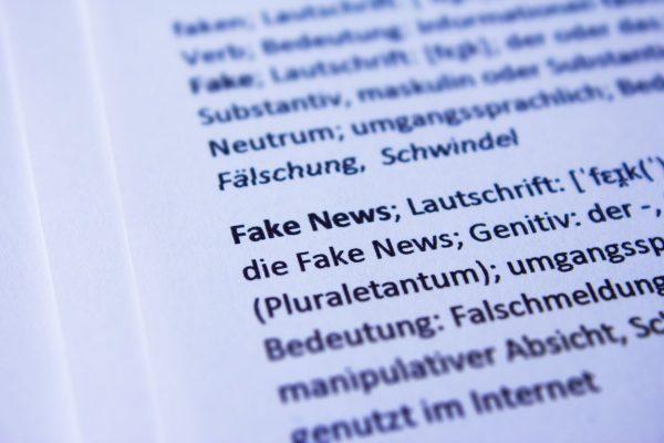 Adjust or Die: Democracy in the Age of Digital Disinformation