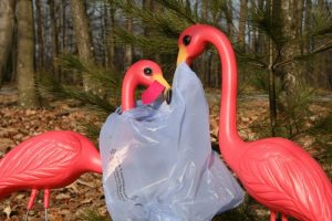 two plastic flamingos with a plastic bag caught on them