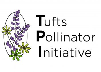 Tufts Pollinator Initiative