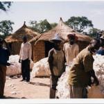 southern mali 2