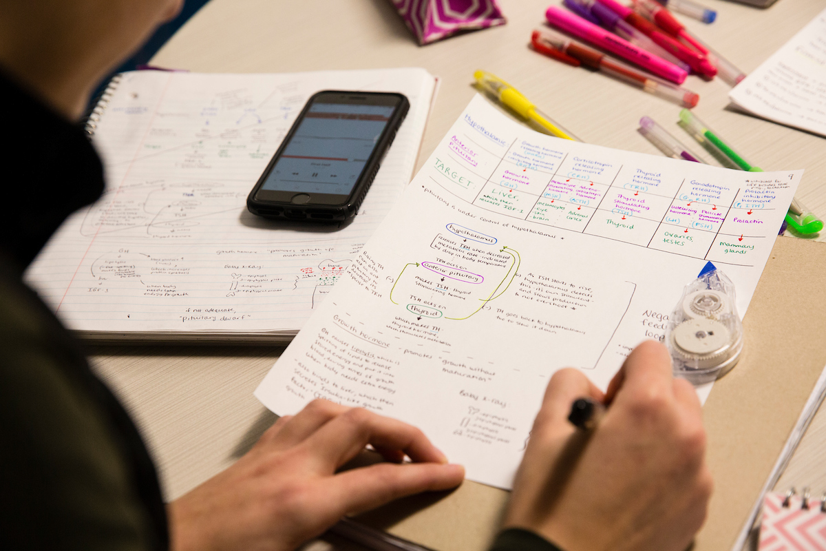 Molly E. Cabana, a graduate student of Occupational Therapy, studies for a physiology final exam in the Collaborative Learning and Innovation Complex. (Anna Miller/Tufts University)
