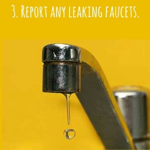 3. Report any leaking faucets.