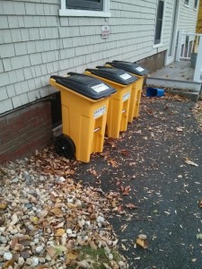Compost Bins Picture