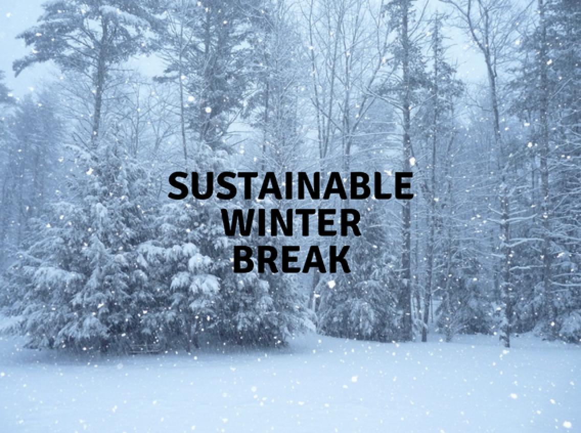 Sustainable Winter Break