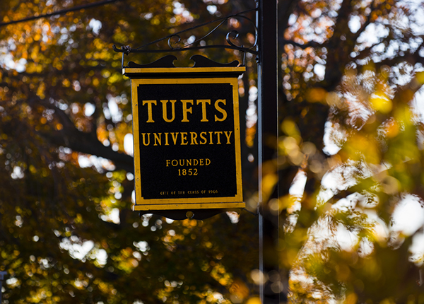 tufts supplement optional essay