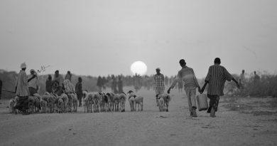 The Prairie Fire that Burned Mogadishu